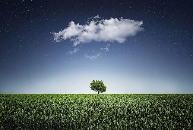 木と大地と空と雲